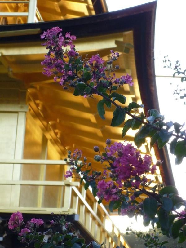 golden Pavilion2