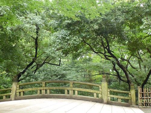 Meiji Jingu 4